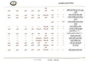 مصفوفة الصلاحيات بين مجلس الإدارة والإدارة التنفيذية-13