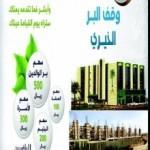 وقف البرالخيري بمحافظة بارق